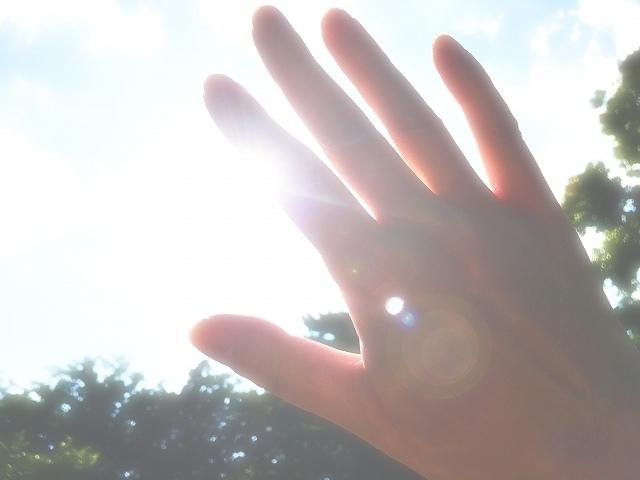 夏の日差しのイメージ画像です