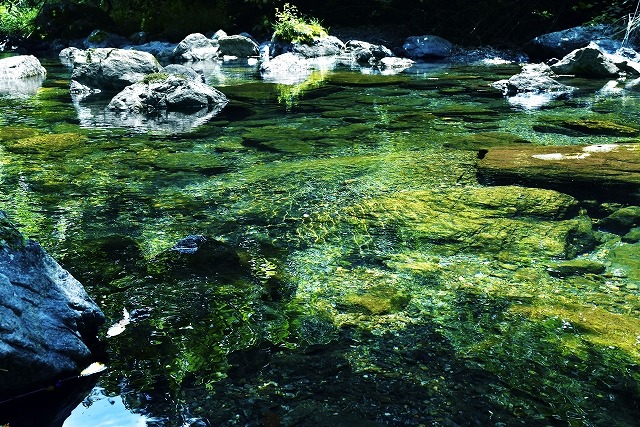 小川の画像です
