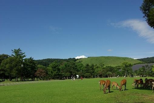 奈良の画像です