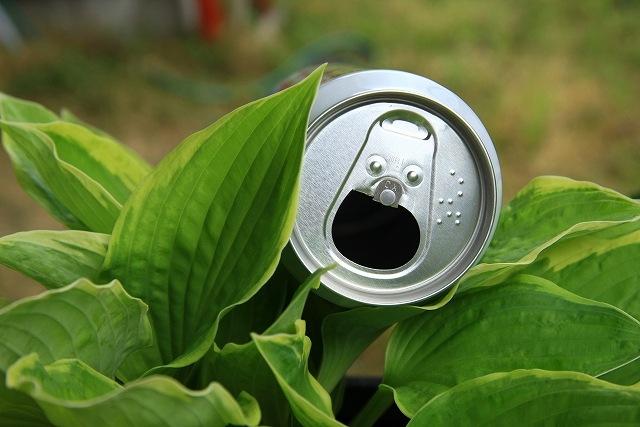 空き缶の画像です