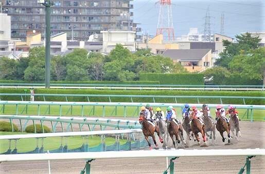 競馬の画像です
